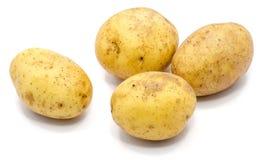 Pomme de terre sur le blanc images stock