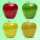 Pomme de vecteur Photo libre de droits