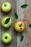 Pomme Delicious verte Image stock
