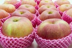Pomme en gros plan disposée ensemble dans une rangée. Photos libres de droits