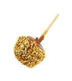 Pomme enduite de caramel Photos libres de droits