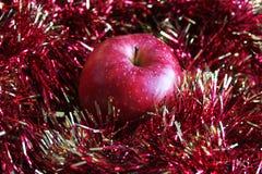 Pomme et tresse rouges Photographie stock