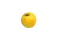Pomme golden delicious jaune Image libre de droits
