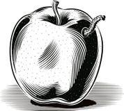 Pomme golden delicious mûre avec une chenille illustration stock