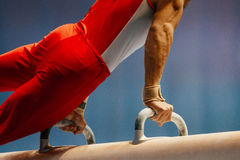 Pomme horse male gymnast. To competition in artistic gymnastics royalty free stock photography