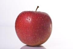 Pomme humide Photos libres de droits