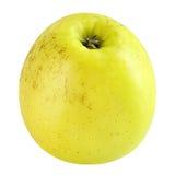 Pomme jaune d'isolement sur le fond blanc Images libres de droits