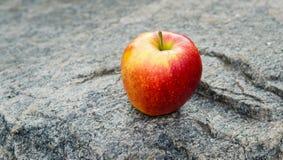 Pomme juteuse rouge mûre sur une roche image stock