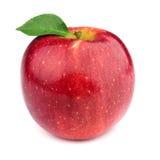 Pomme mûre avec des lames Image stock