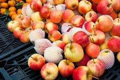 Pomme mûre en vente Image libre de droits