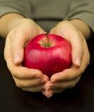 Pomme mûre rouge dans des ses mains photo stock