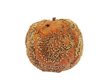 Pomme putréfiée Photographie stock libre de droits