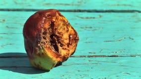 Pomme putréfiée banque de vidéos