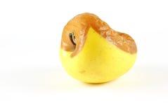 Pomme putréfiée, d'isolement Photographie stock