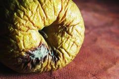 Pomme putréfiée Photo stock