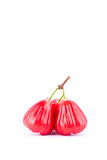 Pomme rose ou fruit rouge de cloche sur la nourriture saine de fruit de pomme rose de fond blanc Photo stock