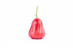 Pomme rose rouge fraîche sur la nourriture saine de fruit de pomme rose de fond blanc d'isolement Image stock
