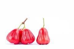Pomme rose rouge fraîche sur la nourriture saine de fruit de pomme rose de fond blanc d'isolement Photos stock