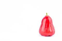 Pomme rose rouge mûre sur la nourriture saine de fruit de pomme rose de fond blanc d'isolement Photographie stock libre de droits