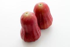 Pomme rose thaïe Photographie stock