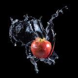 Pomme rouge éclaboussant dans l'eau Images stock
