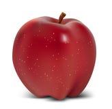Pomme rouge Photos libres de droits