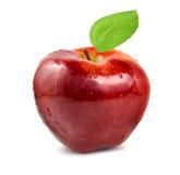 Pomme rouge Images libres de droits