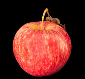 Pomme rouge. Photographie stock