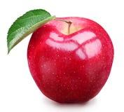 Pomme rouge. Photo libre de droits