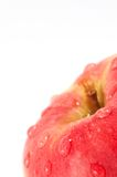 Pomme rouge Photo stock