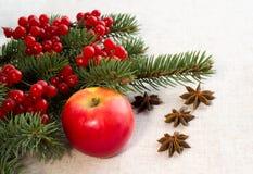 Pomme rouge, anis d'étoile images libres de droits