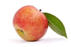 Pomme rouge avec la lame Photographie stock