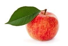 Pomme rouge avec la lame Image stock