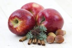 Pomme rouge, bâton de cannelle, anis, noix Photographie stock libre de droits