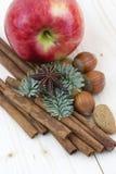 Pomme rouge, bâton de cannelle, anis, noix Images libres de droits
