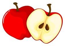 Pomme rouge coupée dedans à moitié illustration de vecteur