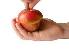 Pomme rouge coupée en tranches avec la main d'isolement Photographie stock
