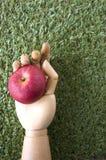 Pomme rouge dans la main en bois image stock