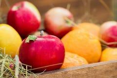 Pomme rouge dans le panier avec les fruits et le foin, foyer sélectif Photos libres de droits