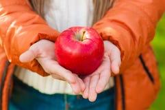 Pomme rouge dans les mains des enfants en parc Photos libres de droits