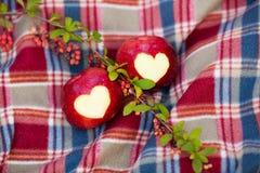 Pomme rouge Delicious avec le coeur symbolique Photo stock