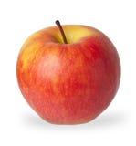 Pomme rouge et jaune Photo libre de droits