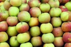 Pomme rouge et verte Image libre de droits