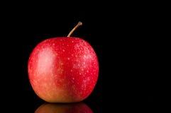 Pomme rouge foncé. sur le noir. Photo stock