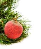 Pomme rouge glacée par Noël Images libres de droits
