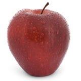 Pomme rouge humide Image libre de droits