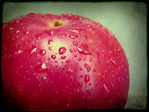 Pomme rouge humide Photo stock