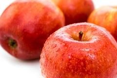 Pomme rouge mûre humide Photos libres de droits