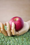 Pomme rouge mise à disposition images stock