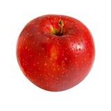 Pomme rouge sur le fond blanc Image stock